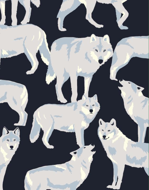 Trousse Double Loups Blancs