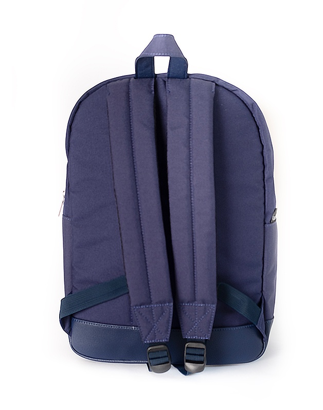 Backpack Swallows
