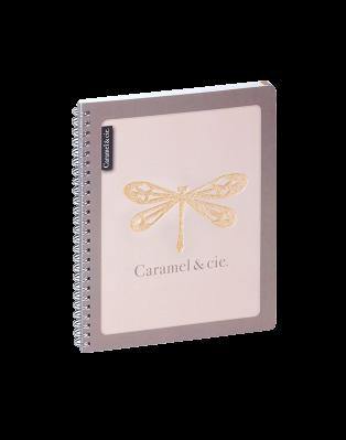 Homework diary Dragonfly