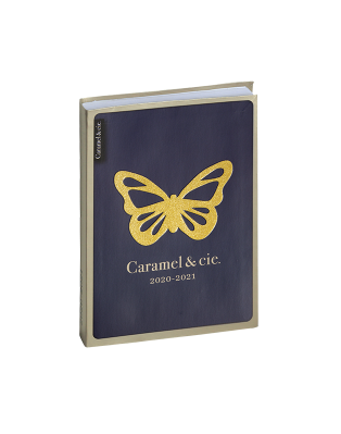 Diary Blue Butterfly